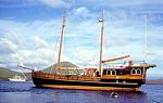 Galapagos Islands cruises,, Sulidae boat
